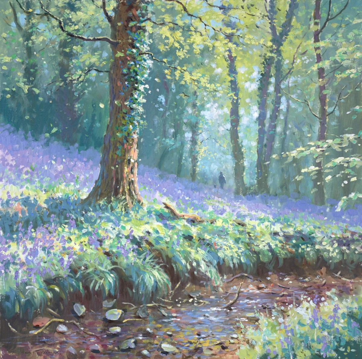 Bluebell Stream III by james preston -  sized 24x24 inches. Available from Whitewall Galleries